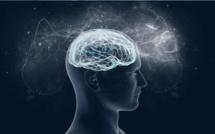 Le faux cerveau d'IBM détecte les convulsions à venir